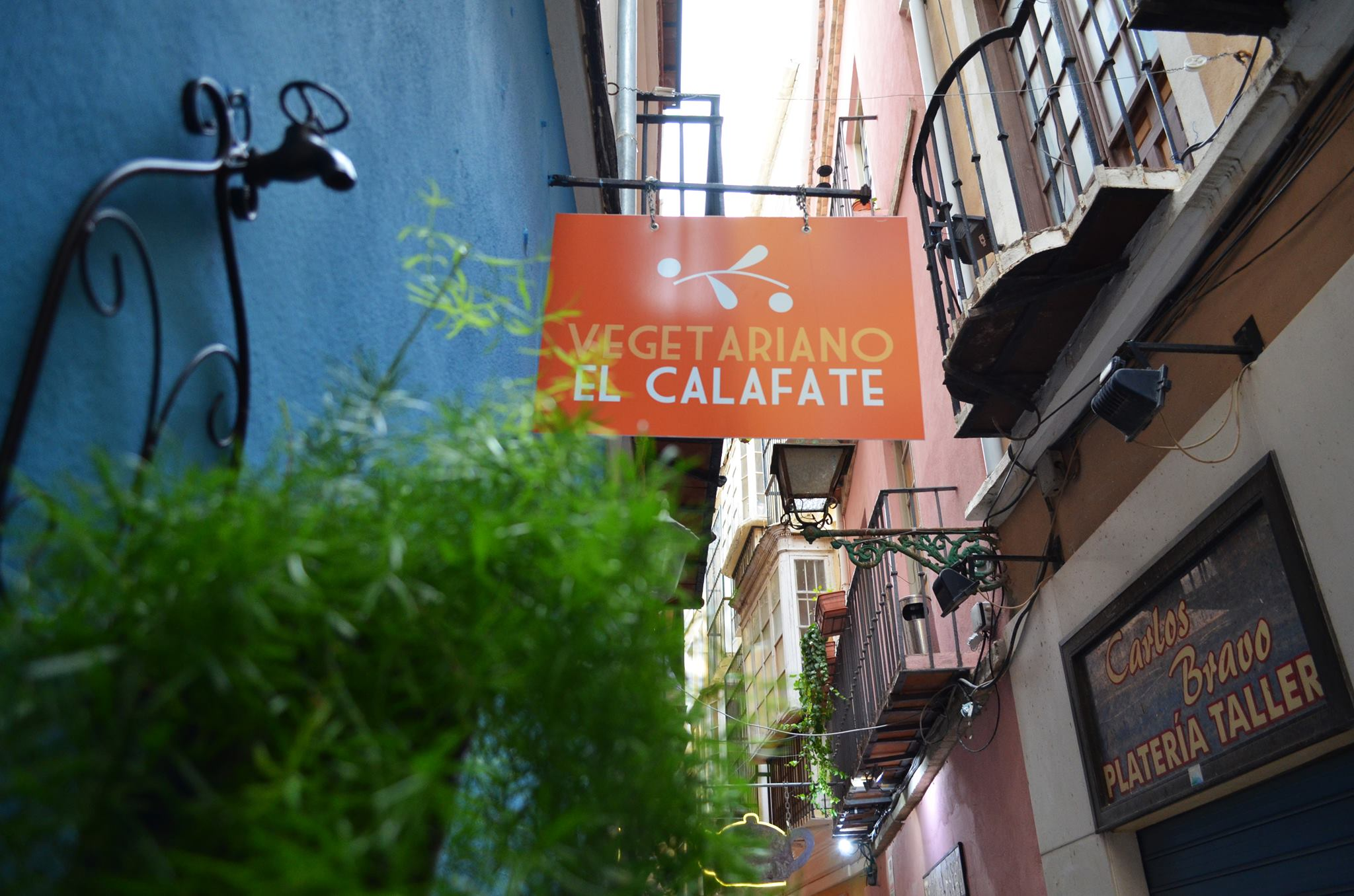 Vegetarische restaurants in Malaga